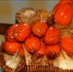 Bibit tanaman buah cimpedak merah king