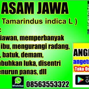 Asam Jawa 03