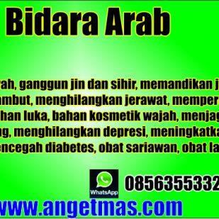 bidara arab bl