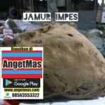 Jamur Impes