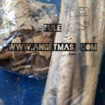 kayu pule, pulai atau babaan pule