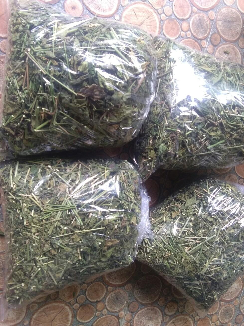 Jual daun dandang gendis kering atau daun dandang gula kering