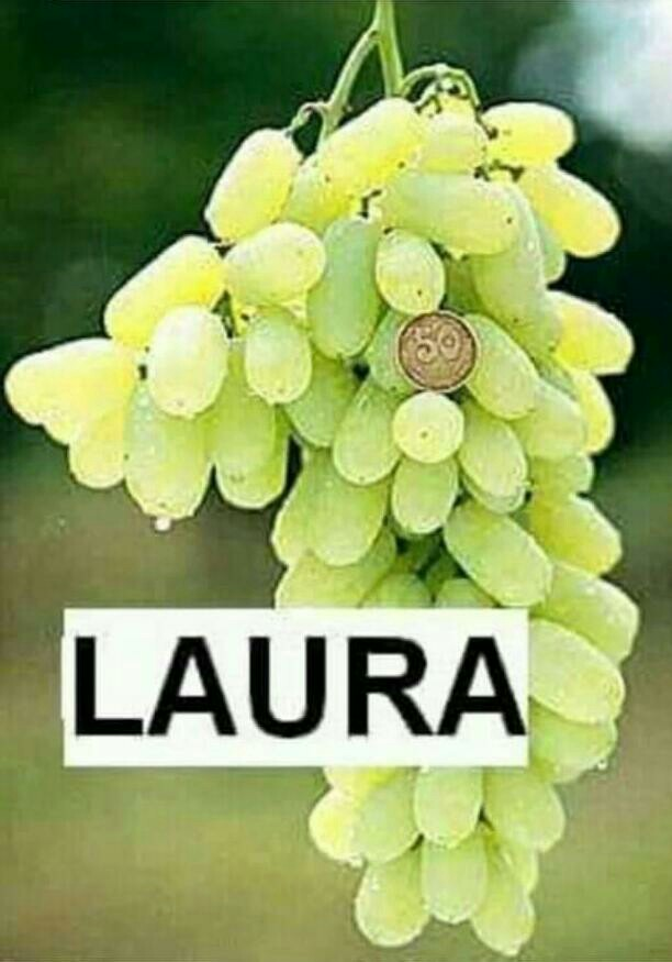 Buah Anggur Laura